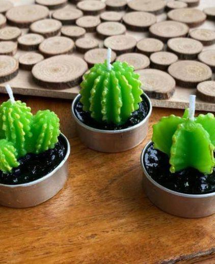 Pack de tres velas de cactus Arizona Green